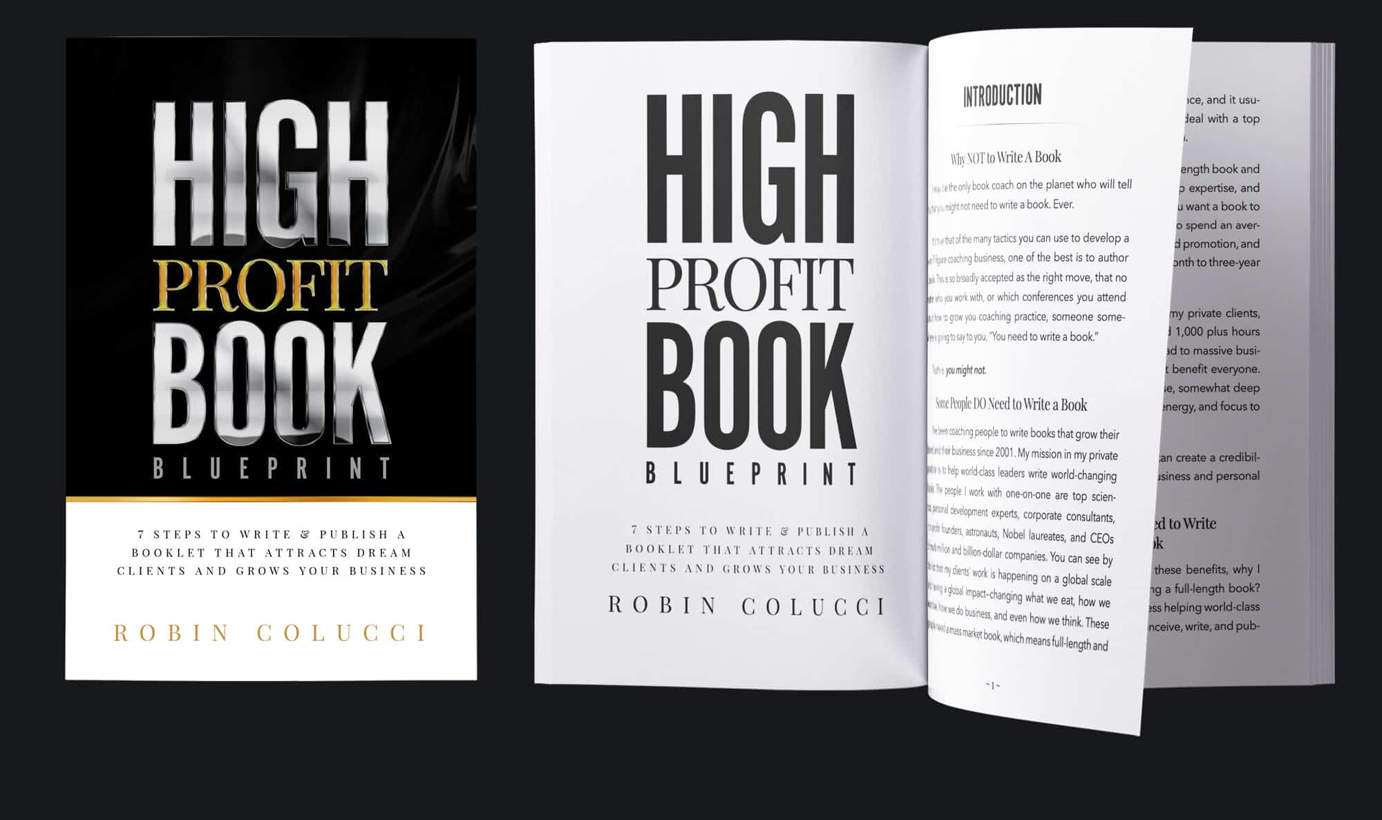 High Profit Book by Robin Colucci Cover